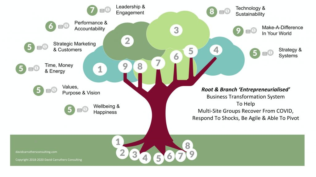 Root & Tree Strategy